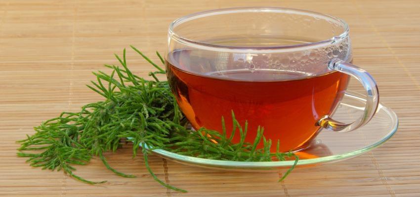 Le pouvoir du thé à la prêle : douceur et amour dans votre vie ...
